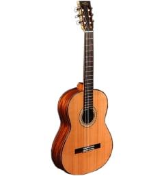Гитара Sigma CM-6NF