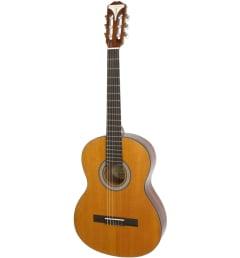 EPIPHONE PRO-1 Classic классическая акустическая гитара